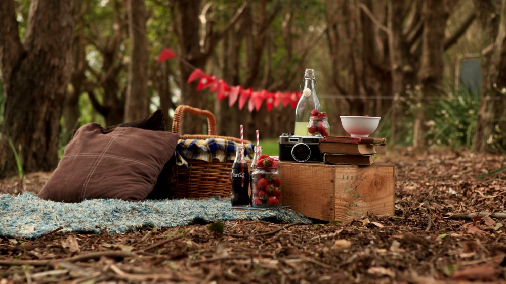 picnic-widescreen-hd-wallpaper-60754-62559-hd-wallpapers.jpg